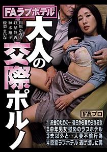 HOKS-067 FAラブホテル 大人の交際ポルノ